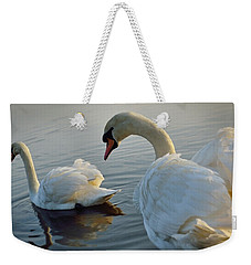 Sandy Water Park 7 Weekender Tote Bag