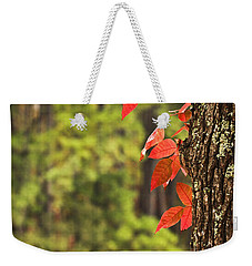 Scenic Elder Lake Weekender Tote Bag