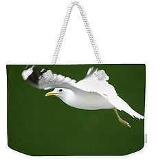 Seagull At The Fjord Weekender Tote Bag