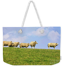 Weekender Tote Bag featuring the photograph Sheep On Dyke by Patricia Hofmeester