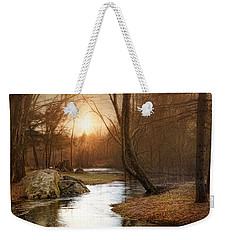 Weekender Tote Bag featuring the photograph Silence Is Golden by Robin-Lee Vieira
