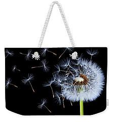 Silhouettes Of Dandelions Weekender Tote Bag by Bess Hamiti