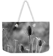 Weekender Tote Bag featuring the photograph Simply Thistle by Rick Morgan