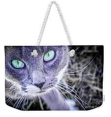 Skitty Cat Weekender Tote Bag by Cheryl McClure
