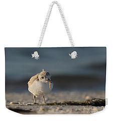 Snowy Plover Weekender Tote Bag by Meg Rousher