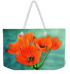 Weekender Tote Bag featuring the photograph Star Of Bethlehem by Jutta Maria Pusl