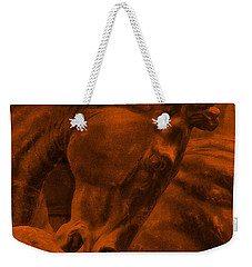 Stone Steed Reds Weekender Tote Bag