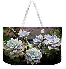 Weekender Tote Bag featuring the photograph Succulents by Catherine Lau
