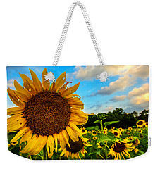 Weekender Tote Bag featuring the photograph Summer Suns  by John Harding