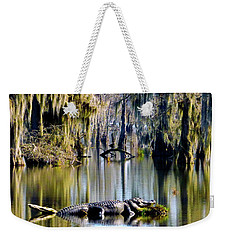 Sunbathing In January Weekender Tote Bag