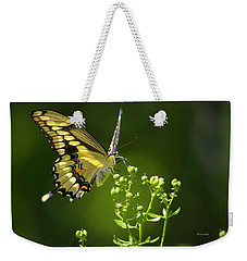 Weekender Tote Bag featuring the photograph Elegant Swallowtail Butterfly by Christina Rollo