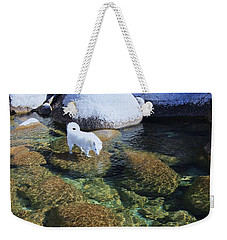 Weekender Tote Bag featuring the photograph Tahoe Wild  by Sean Sarsfield