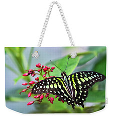 Weekender Tote Bag featuring the photograph Tailed Green Jay Butterfly  by Saija Lehtonen