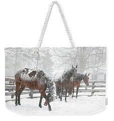 Tails To The Wind Weekender Tote Bag