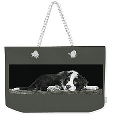 Tell Me More About Sheep Weekender Tote Bag