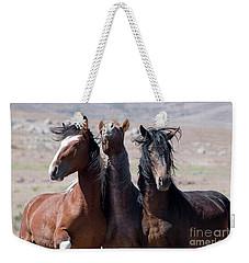 The Boys Weekender Tote Bag