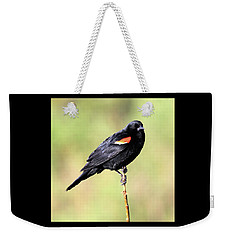 Weekender Tote Bag featuring the photograph The Look by Shane Bechler