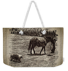 The New Mare And The Perfect Summer Day Weekender Tote Bag