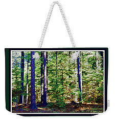 Weekender Tote Bag featuring the photograph The Woods by Shirley Moravec