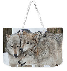 Three Wolves Are A Crowd Weekender Tote Bag