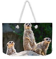 Three's Company Weekender Tote Bag by Jamie Pham