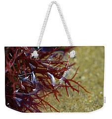 Tidepool Seaweed Weekender Tote Bag