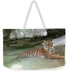 Tiger Weekender Tote Bag by John Black
