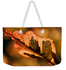 Tri-color Beech In Autumn Weekender Tote Bag