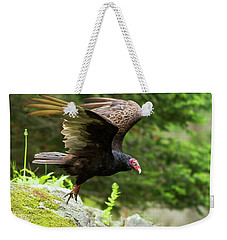 Weekender Tote Bag featuring the photograph Turkey Vulture by Mircea Costina Photography