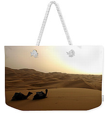 Two Camels At Sunset In The Desert Weekender Tote Bag by Ralph A  Ledergerber-Photography