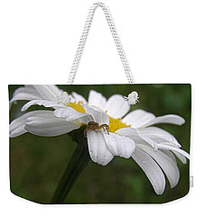 Weekender Tote Bag featuring the photograph Umbrella For A Spider by Angie Rea