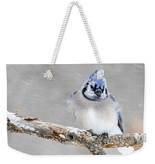 Waiting Out The Storm Weekender Tote Bag by Amy Porter
