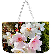 White Apple Blossom In Spring Weekender Tote Bag