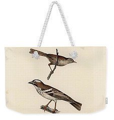 White-browed Sparrow-weaver And Grass Or Bush Warbler Weekender Tote Bag