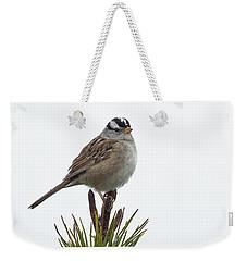 White Crowned Sparrow Weekender Tote Bag