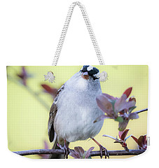 Weekender Tote Bag featuring the photograph White-crowned Sparrow  by Ricky L Jones