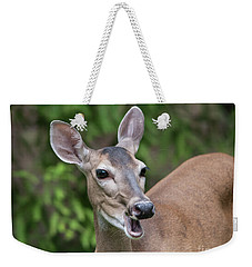 White Tailed Deer No. 2 Weekender Tote Bag