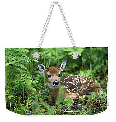 Weekender Tote Bag featuring the photograph White-tailed Deer Odocoileus by Konrad Wothe