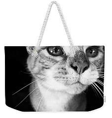 Who Me? Weekender Tote Bag