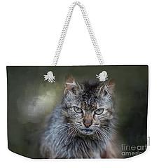 Wild Cat Portrait Weekender Tote Bag