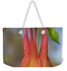 Weekender Tote Bag featuring the photograph Wild Columbine by Barbara Bowen