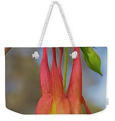 Wild Columbine Weekender Tote Bag by Barbara Bowen