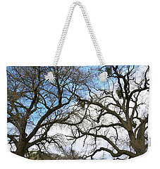 Weekender Tote Bag featuring the photograph Winter Trees At Fort Tejon Lebec California  by Floyd Snyder