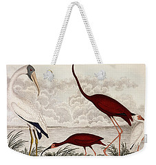 Wood Ibis, Scarlet Flamingo, White Ibis Weekender Tote Bag