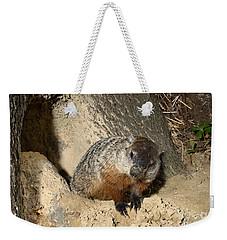 Woodchuck Weekender Tote Bag by Ted Kinsman