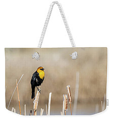 Weekender Tote Bag featuring the photograph Yellow Headed Blackbird by Michael Chatt