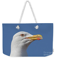 Yellow-legged Gull - Larus Michahellis Weekender Tote Bag by Jivko Nakev
