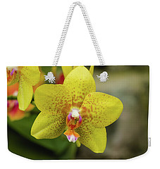 Weekender Tote Bag featuring the photograph Yellow Orchid by Cristina Stefan
