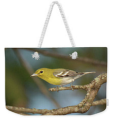 Yellow-throated Vireo Weekender Tote Bag by Alan Lenk
