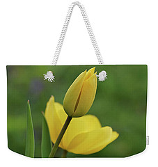 Weekender Tote Bag featuring the photograph Yellow Tulips by Sandy Keeton
